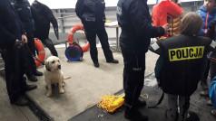 Lodowisko Chwiałka - Pies policyjny i policjanci