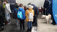Lodowisko Chwiałka - Pies policyjny i dzieci