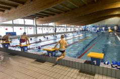 Dzieci na basenie na słupkach startowych