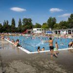 Pływalnia letnia w Parku Kasprowicza (3) Tłum ludzi na basenie sportowym w słoneczny dzień